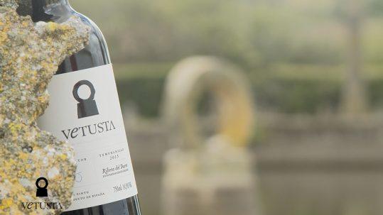 Por qué elaborar vino en Ribera del Duero