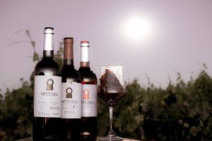 Cómo disfrutar del vino más y mejor