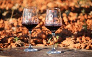 Vinos Ribera del Duero recomendados