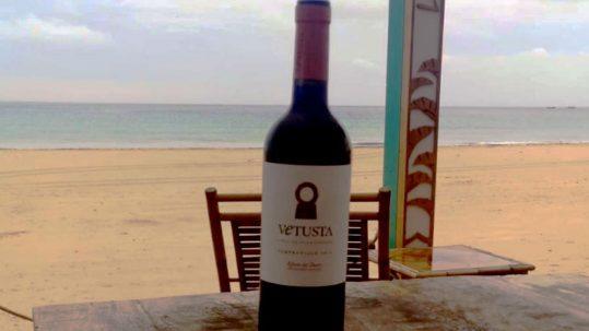 Sitios donde beber buen vino en Andalucía